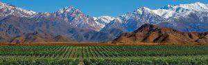 Mendoza Region