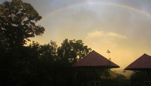 Rainbow at Owlet Lodge