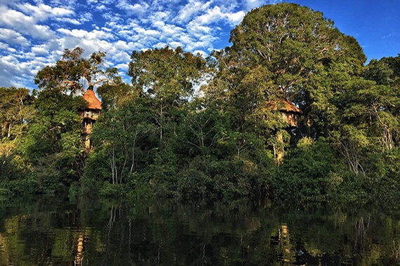 Treehouse, Iquitos