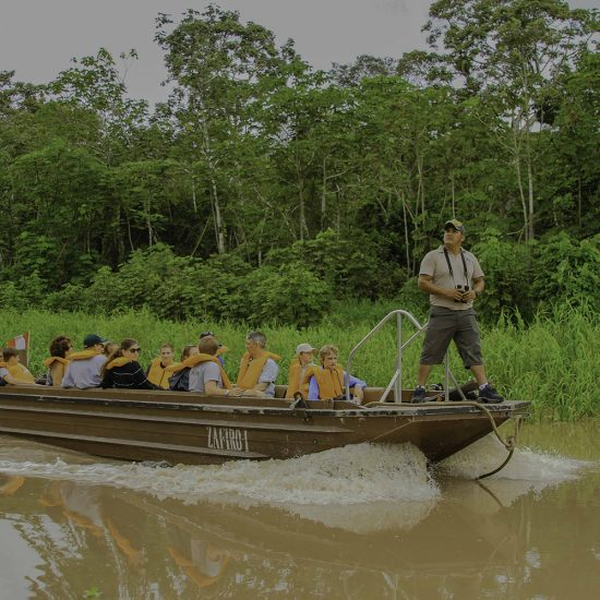 Zafiro Cruise Jungle Experiences